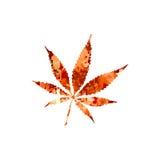 marijuana Imagens de Stock Royalty Free