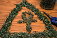 Marijuana Ankh and Pyramid. Still California Dreaming Medical Marijuana Stock Photo
