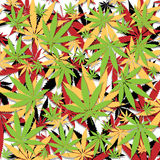 Marijuana background Stock Photos