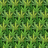 Marijuana background vector seamless patterns Royalty Free Stock Image