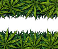 Marijuana Border Design Royalty Free Stock Images