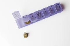 A marijuana brota no recipiente das drogas no branco de cima de Fotografia de Stock Royalty Free