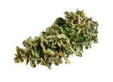 Marijuana bud Royalty Free Stock Photos