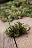 Marijuana bud close up Stock Image