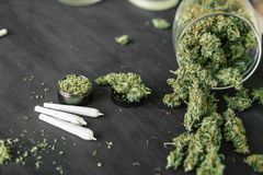 Marijuana bud flowers of cannabis. grinder and cannabis joint. Marijuana bud flowers of cannabis. grinder and shredded cannabis joint stock photo