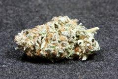 Marijuana. An  bud from an marijuana plant Royalty Free Stock Photo