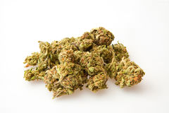 Marijuana buds Stock Images