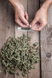 Marijuana buds and hande meking joint. Marijuana buds with hande meking big joint Stock Image