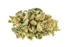 Marijuana buds isolated on white background Stock Image
