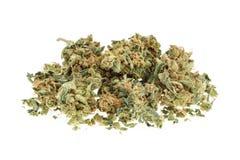Marijuana buds isolated on white background Royalty Free Stock Photo