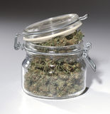 Marijuana-2 Stock Image