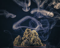 Marijuana buds and smoke rings Royalty Free Stock Images
