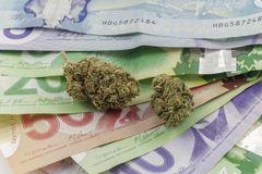 Marijuana on Canadian Cash. And Coins Stock Image