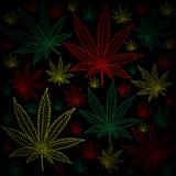 Marijuana-Cannabis-background Royalty Free Stock Photos