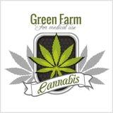 Marijuana - Cannabis. For Medical Use. Vector Set. Stock Photography