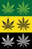 Marijuana cannabis grass decorative stroke leaf  illustration Stock Images