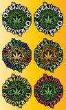 Marijuana cannabis indica green leaf  illustration Royalty Free Stock Photos