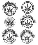 Marijuana and cannabis leaf silhouette stamp illustration Stock Photo