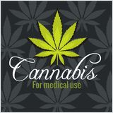 Marijuana - cannabis. For medical use. Vector set. Royalty Free Stock Image