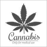 Marijuana - cannabis. For medical use. Vector set Stock Image