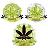 Marijuana and cannabis plant symbol  Stock Photo