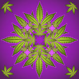 Marijuana and cannabis plant symbol stock illustration