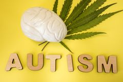 Marijuana or cannabis and treatment of autism concept photo. Figure of human brain lies on green leaves of cannabis plant near thr. Ee-dimensional letters royalty free stock photography