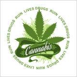 Marijuana - cannabis Vite di rovina delle droghe Fotografie Stock