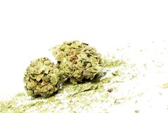 Marijuana and Cannabis Royalty Free Stock Photo