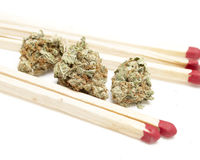 Marijuana Royalty Free Stock Photo