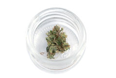 Marijuana,cannabis. Marijuana, cannabis on a white background stock image