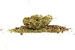 Marijuana cannabislegalisering, den vita bakgrundsstudion, förgiftar Arkivbild
