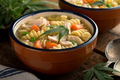 Marijuana Chicken Noodle Soup. A bowl of delicious hearty homemade marijuana chicken noodle soup Stock Image