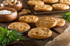 Marijuana Cookies. Delicious homemade peanut butter marijuana cookies Stock Image