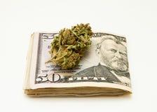 Marijuana and Dollar notes Royalty Free Stock Photography