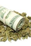 Marijuana e soldi Fotografia Stock Libera da Diritti