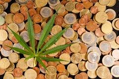Marijuana e soldi Fotografia Stock