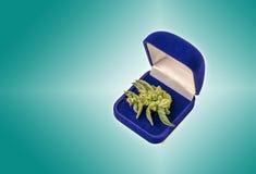 Marijuana em uma caixa para a joia Fotografia de Stock Royalty Free