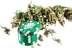 Marijuana en un fondo blanco Foto de archivo libre de regalías
