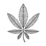 Marijuana Ethnic Graphic Style. Cannabis, Marihuana Or Hemp Symbol