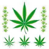 marijuana för cannabishempleafs stock illustrationer