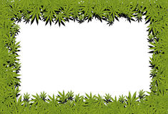 Marijuana frame Royalty Free Stock Photography