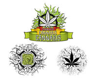Marijuana and ganja leaf design badges  Stock Photos