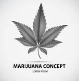 Marijuana Royalty Free Stock Photos
