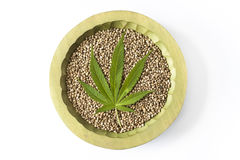 Marijuana green leaf raw hemp seeds close up Royalty Free Stock Image