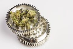 Marijuana in grinder Stock Photography