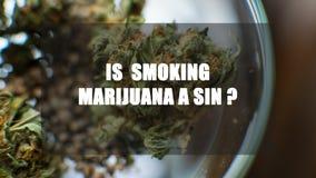 Marijuana i en krus Cannabisskarv Medicinskt eller recreative royaltyfria foton