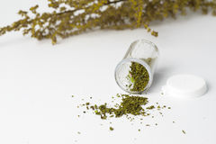 Marijuana i medicinflaska på vit bakgrund, mjuk fokusört Arkivfoto