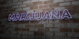 MARIJUANA - Insegna al neon d'ardore sulla parete del lavoro in pietra - 3D ha reso l'illustrazione di riserva libera della sovra illustrazione di stock