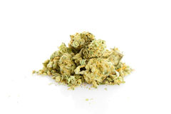 Marijuana isolated on white background. Stock Photo